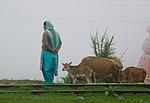 Indie - civilizace kousek před Shimlou